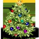 1355786520_tree